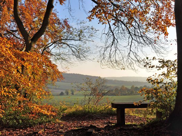 Explore Buckinghamshire's quintessential countryside experience