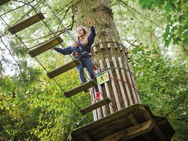 Get a taste of the high life and Go Ape in Buckinghamshire this Autumn