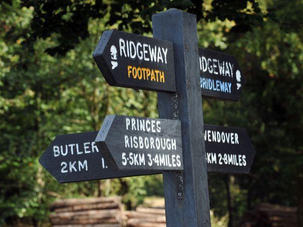 Buckinghamshire's Best Walks