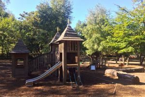 Black Park Country Park