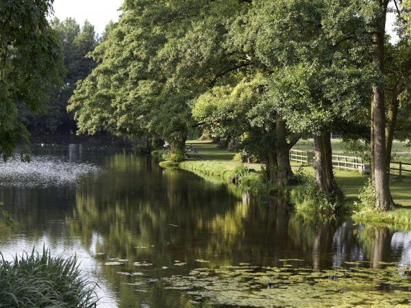Hartwell House Gardens