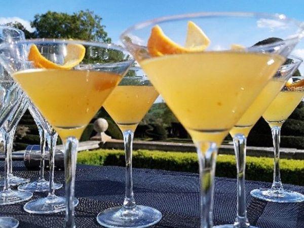 The Danesfield Gin Bar