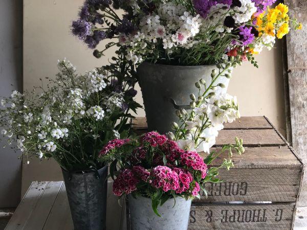 Howe Farm Flowers